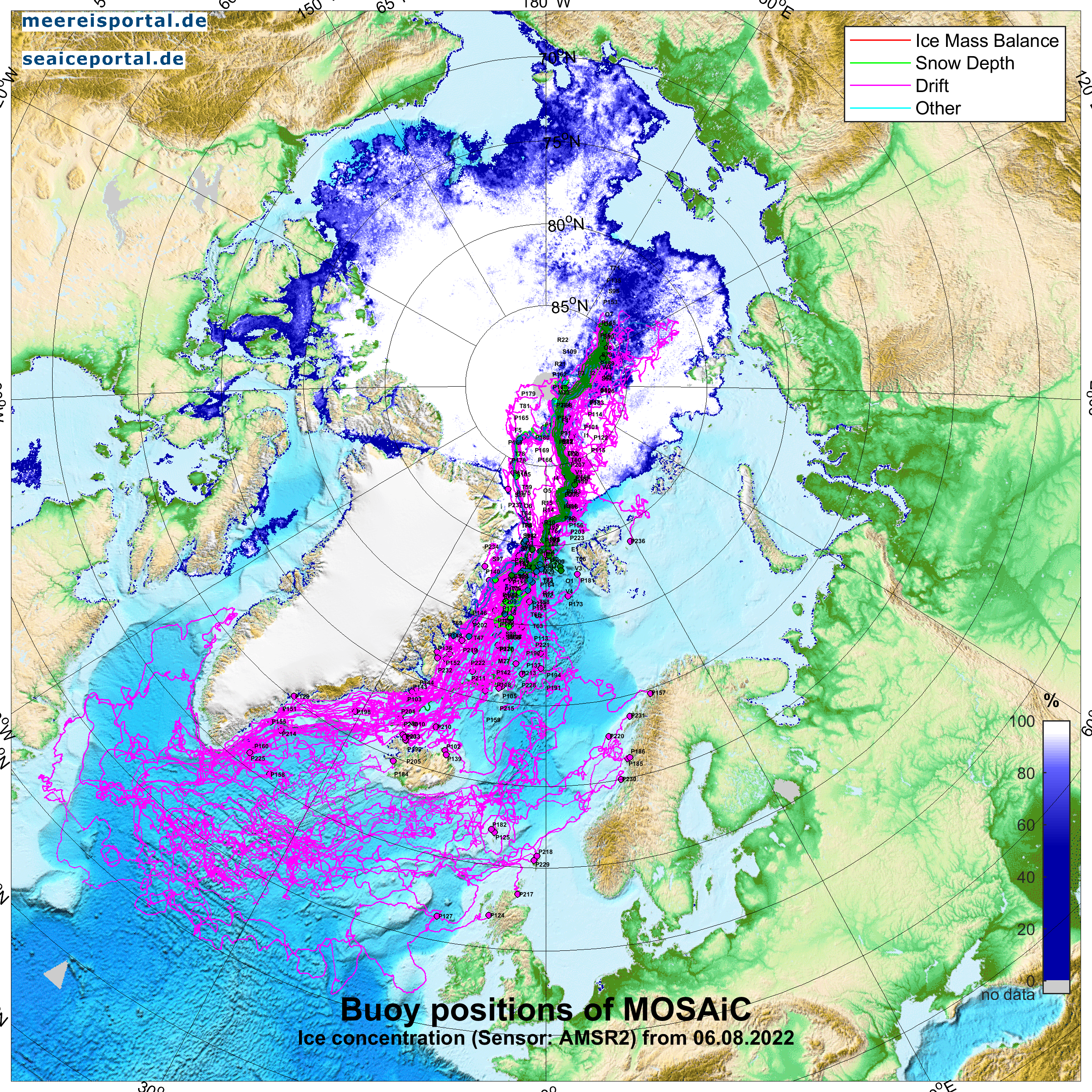 arctic map with MOSAiC buoys